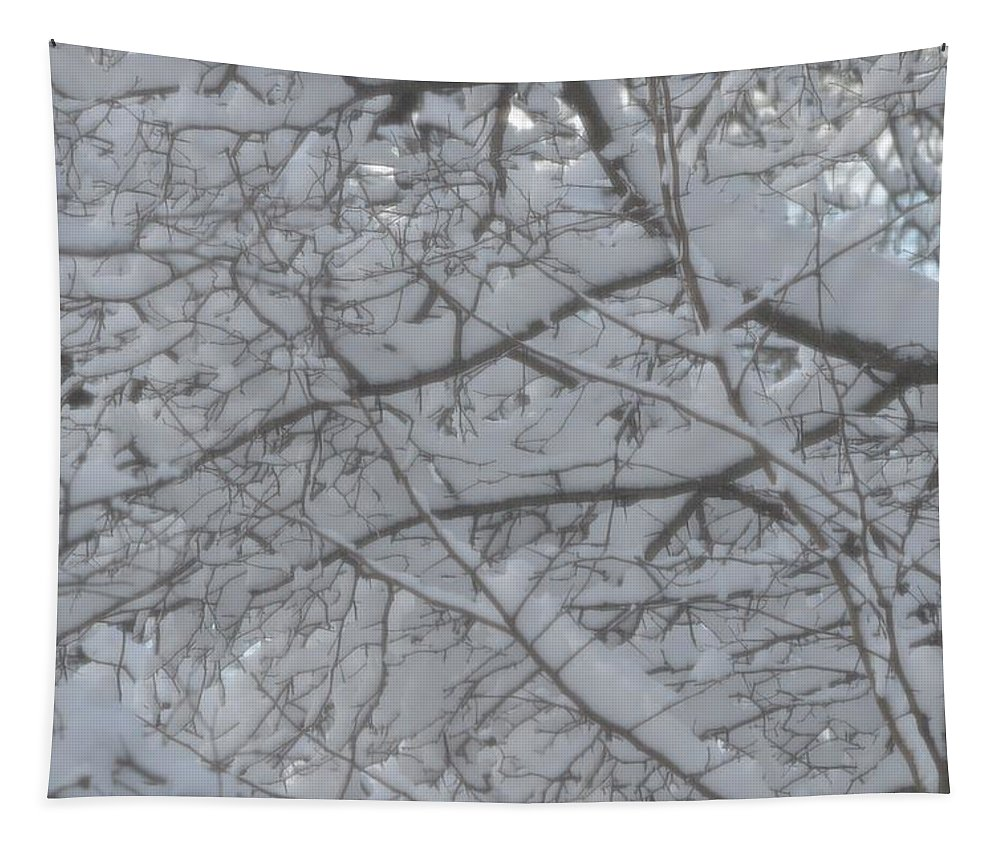 White Color Tapestry featuring the photograph Branched Snow by Sonali Gangane