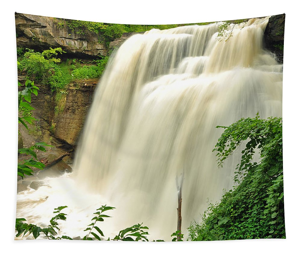 Brandywine Falls Tapestry featuring the photograph Brandywine Falls by Georgia Fowler