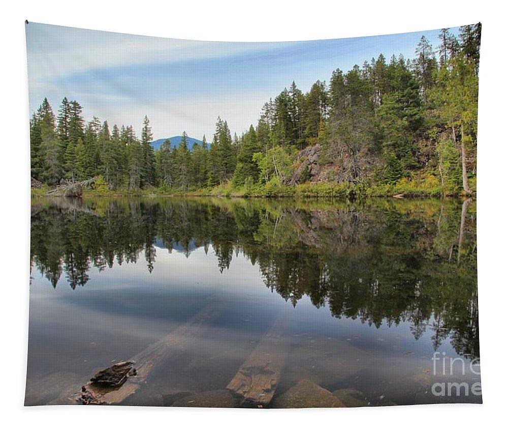 Swim Lake Tapestry featuring the photograph Brandywine Swim Lake by Adam Jewell
