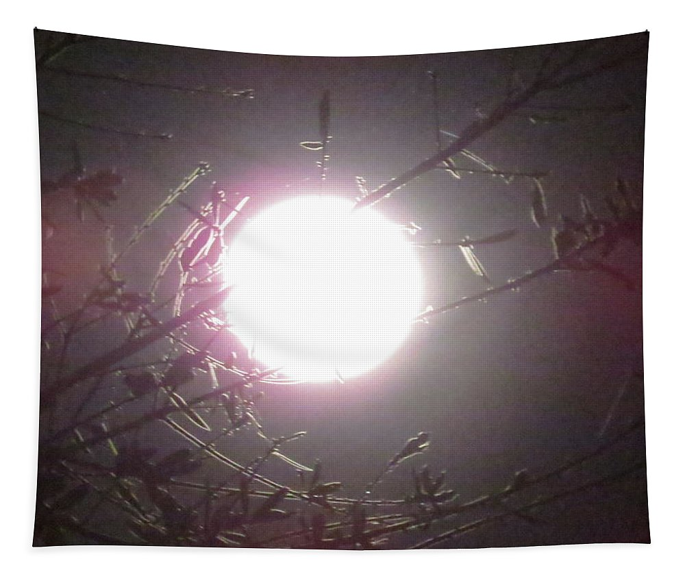 Bright Moon Tapestry featuring the photograph Bright Moon by Zina Stromberg