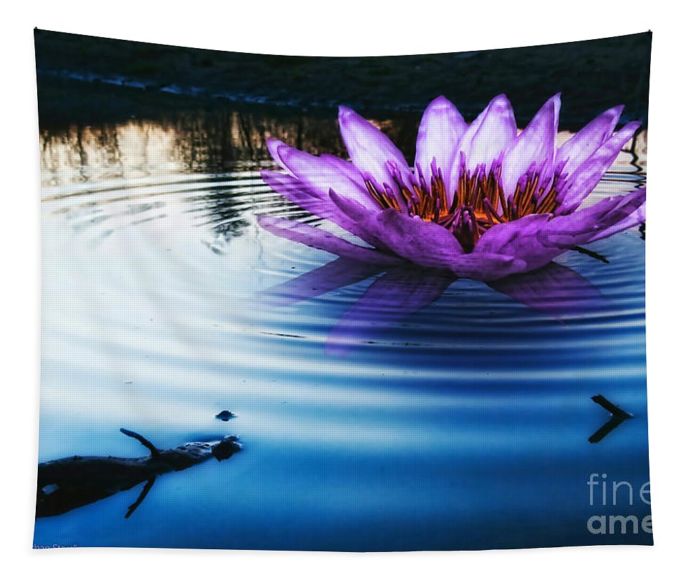 Brighter Than Stars Tapestry featuring the photograph Brighter Than Stars by Mo T