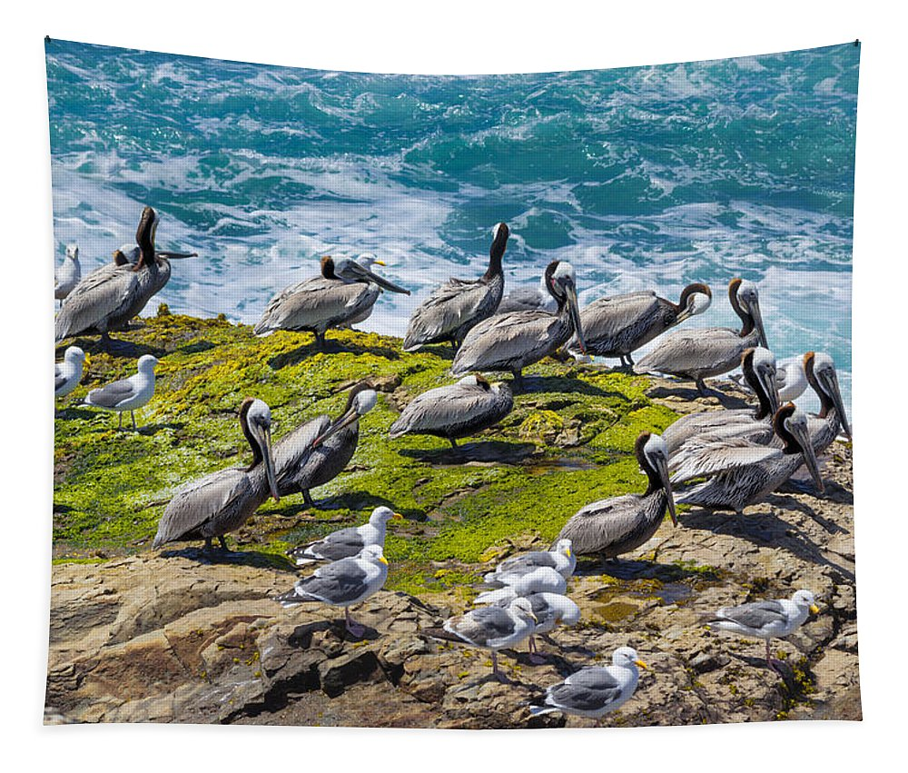 Brown Pelican Tapestry featuring the photograph Brown Pelicans by Kathleen Bishop