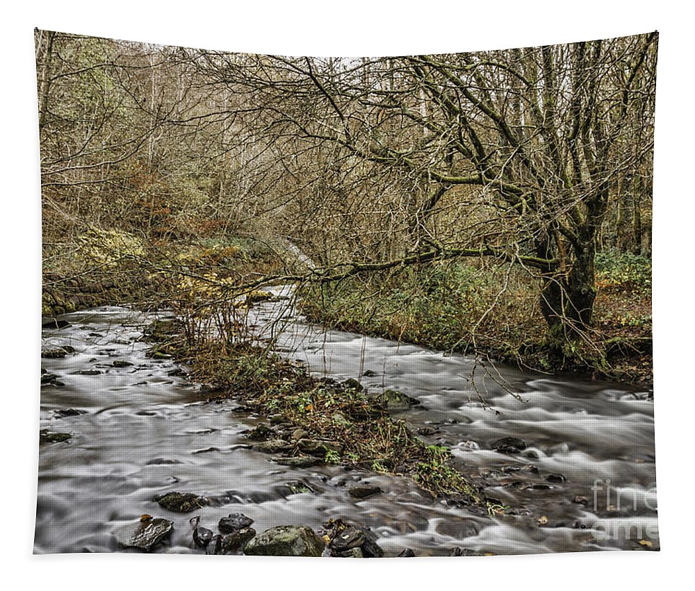 Bubbling Water Tapestry featuring the photograph Bubbling Water by Steve Purnell