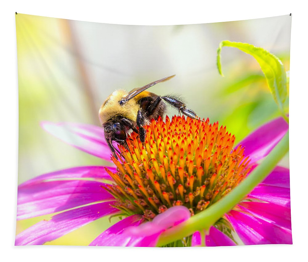 Bees Tapestry featuring the photograph Bumble Bee by Bob Orsillo