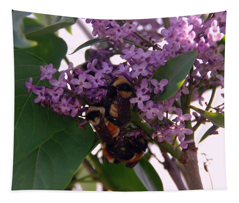 Bees Tapestry featuring the photograph Bumble Bees In Flowers by Jeff Swan