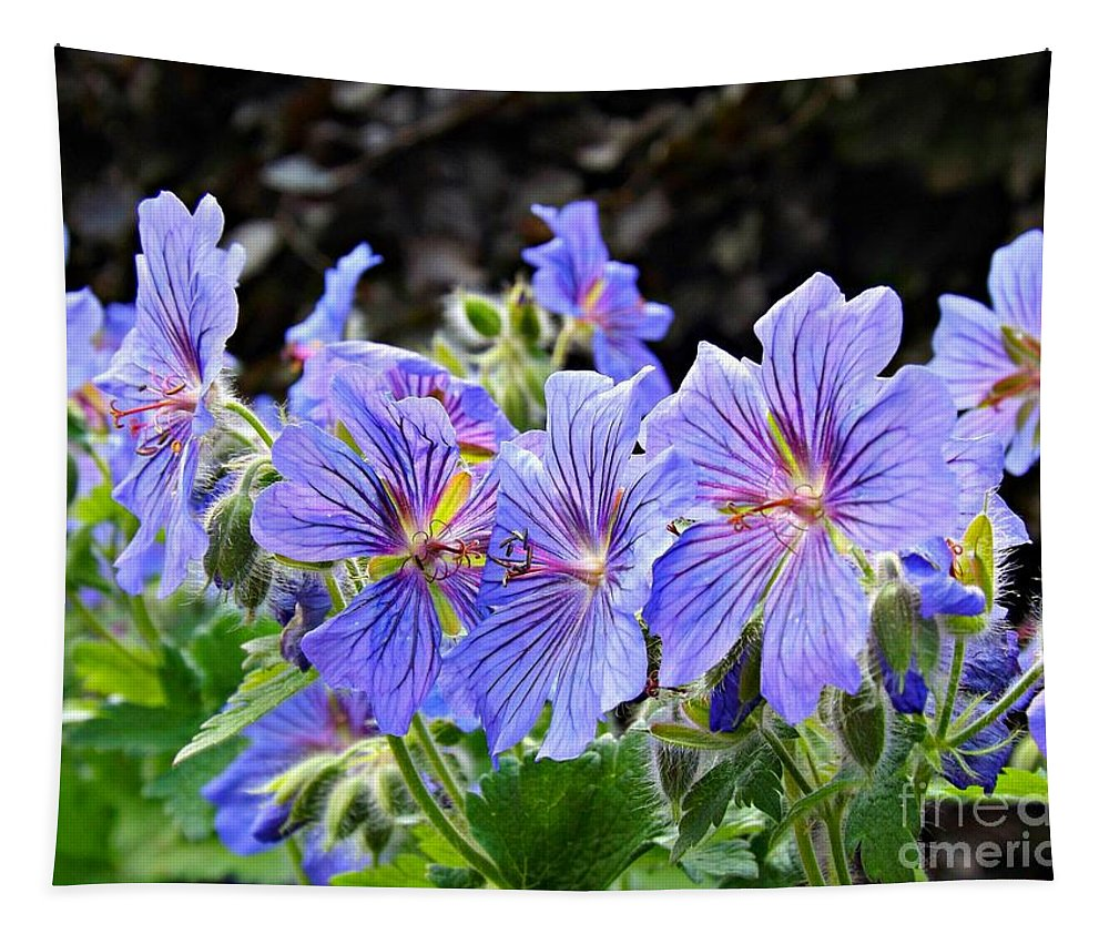 Geranium Tapestry featuring the photograph Bunches by Clare Bevan