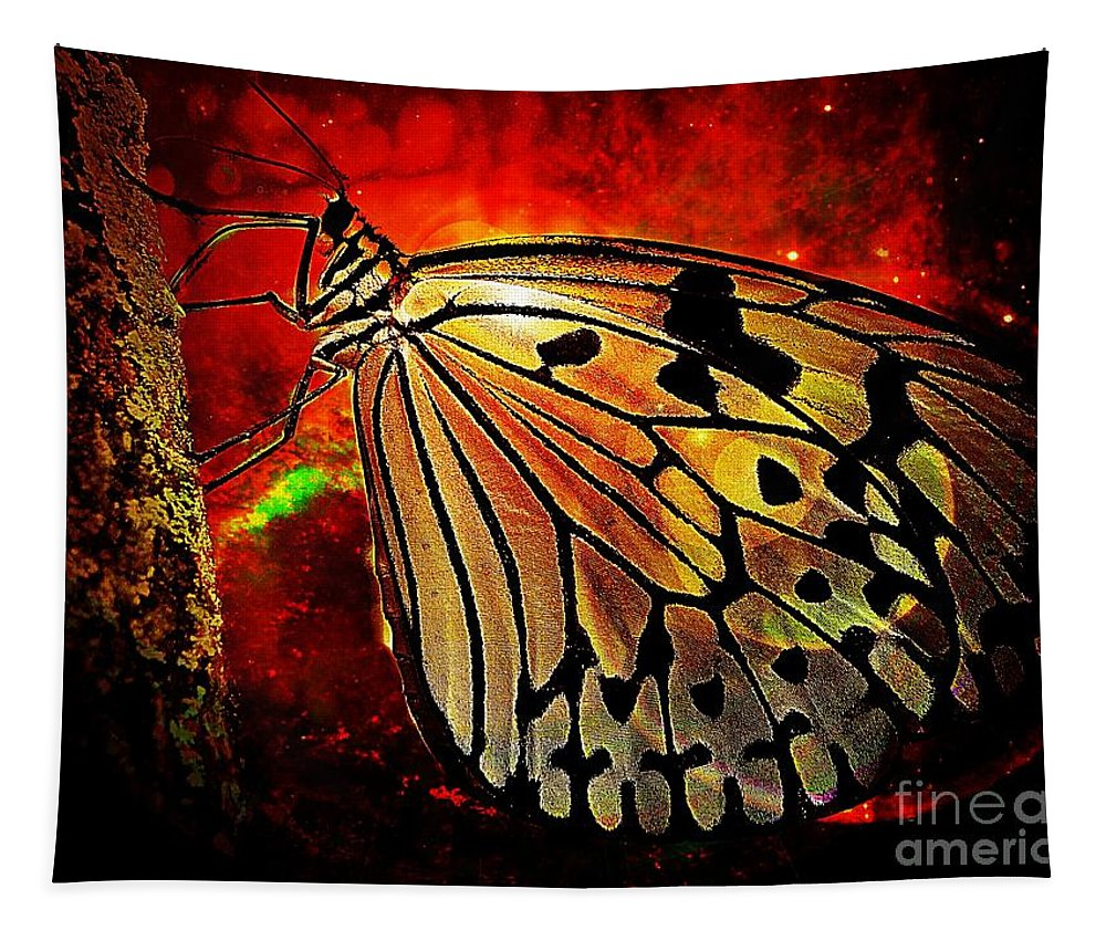 Butterfly Tapestry featuring the photograph Butterfly 1 by Ben Yassa