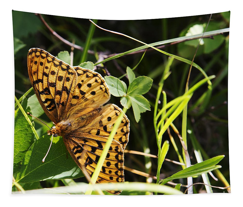 Butterfly Tapestry featuring the photograph Butterfly At Signal Mountain by Belinda Greb