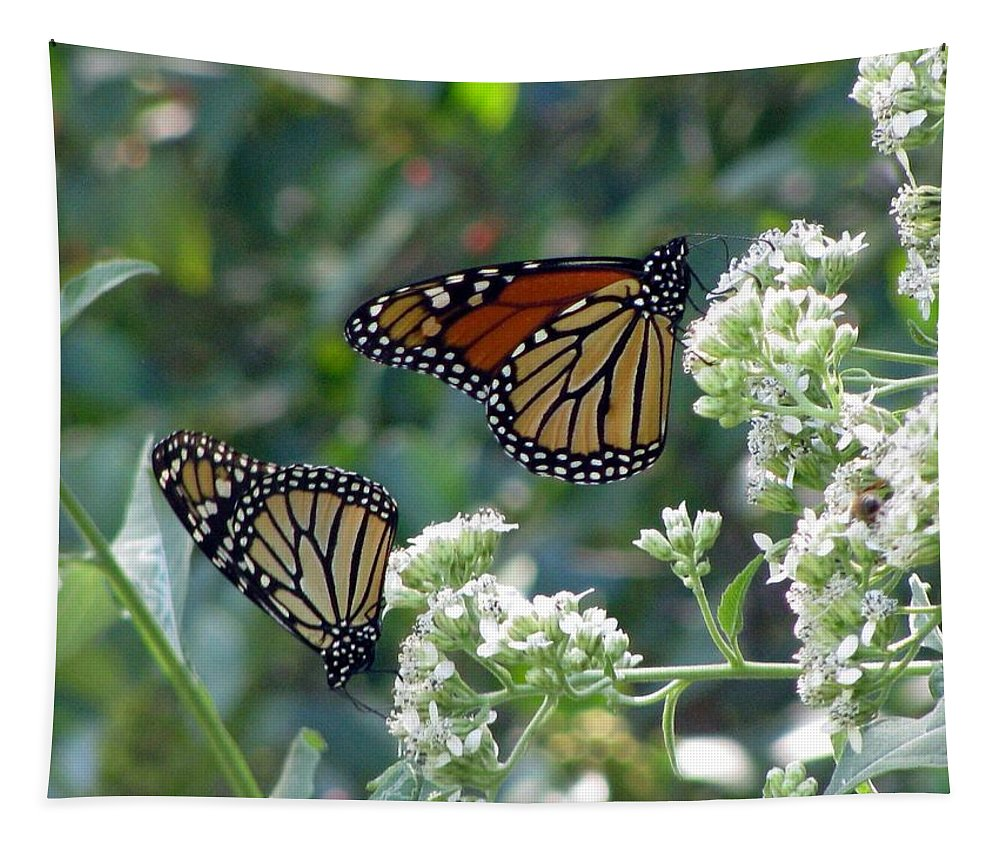 Butterfly Tapestry featuring the photograph Butterfly Garden - Monarchs 01 by Pamela Critchlow