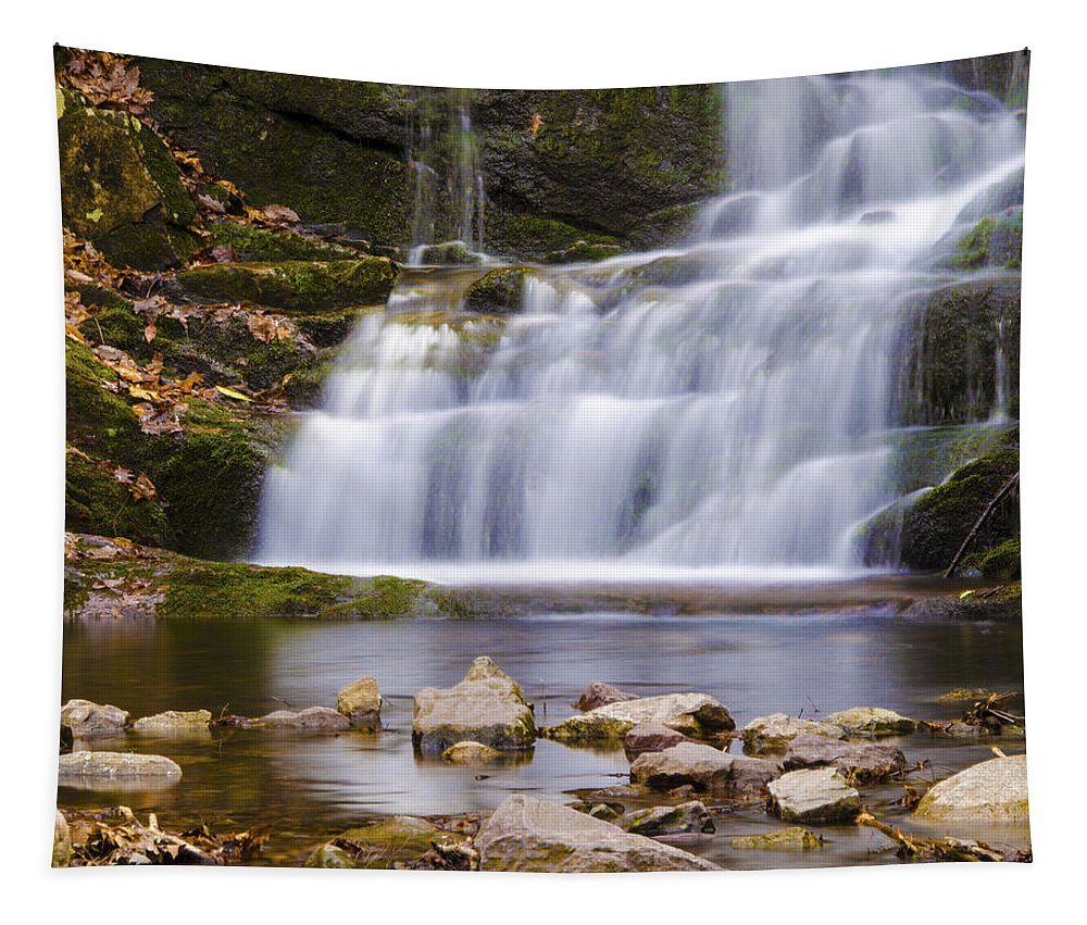 Waterscape Tapestry featuring the photograph Buttermilk Falls by Eleanor Bortnick