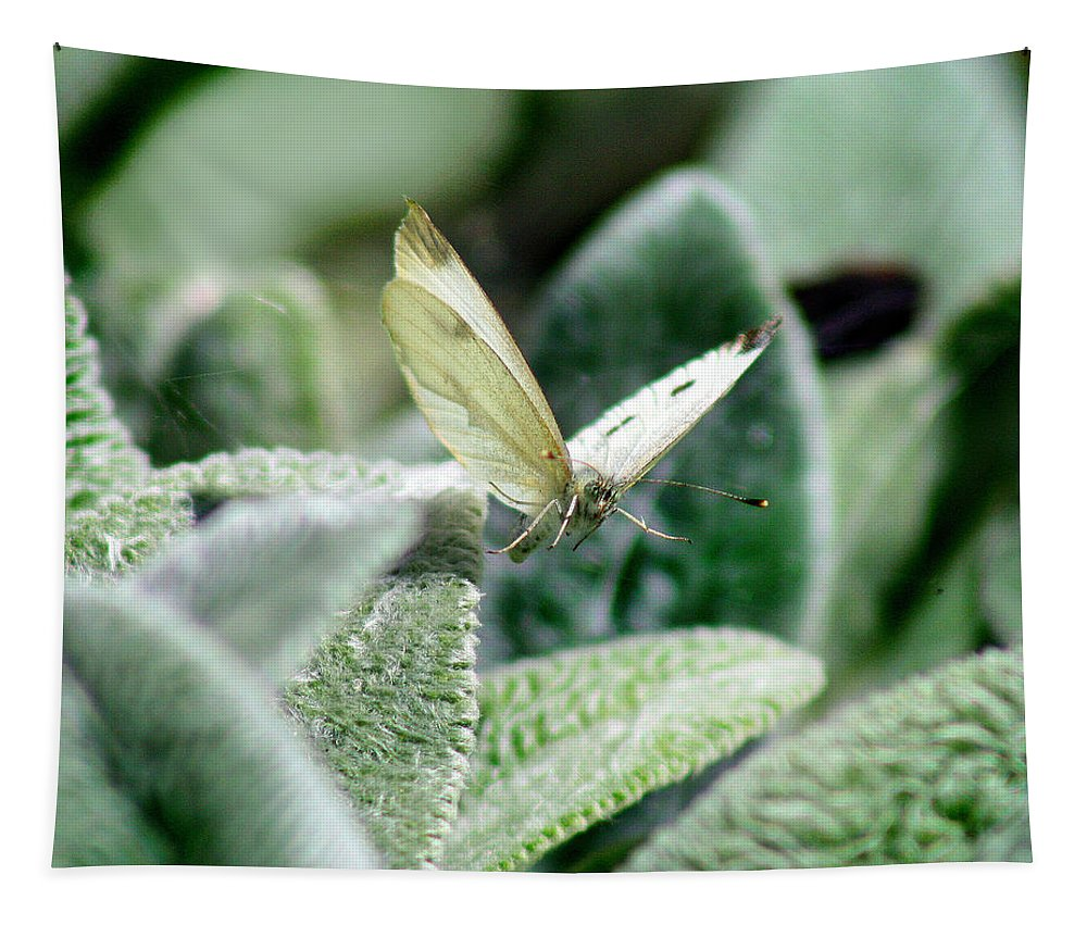 Cabbage White Tapestry featuring the photograph Cabbage White Butterfly In Flight by Karen Adams