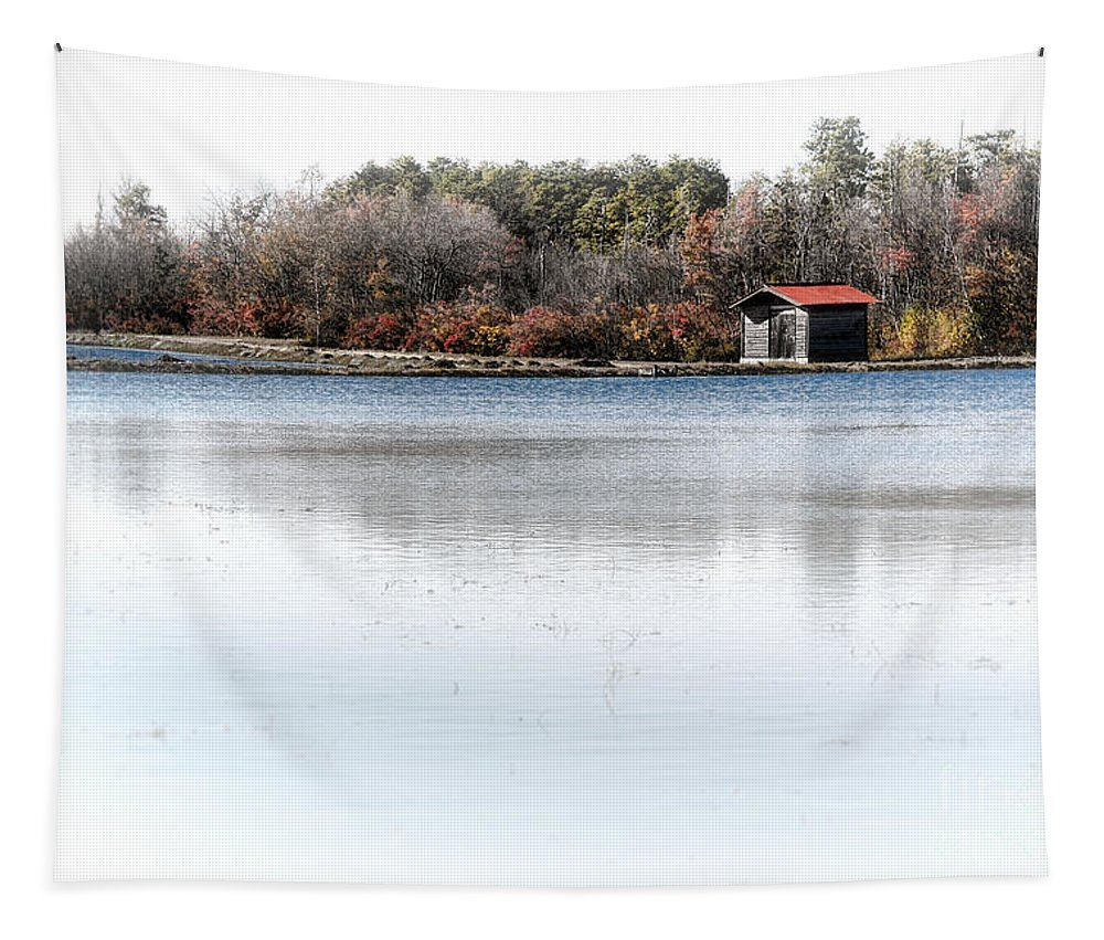 Cabin Tapestry featuring the photograph Cabin On A Lake by Olivier Le Queinec