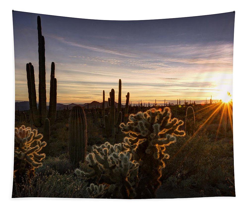 Sunset Tapestry featuring the photograph Cactus Sunset by Saija Lehtonen