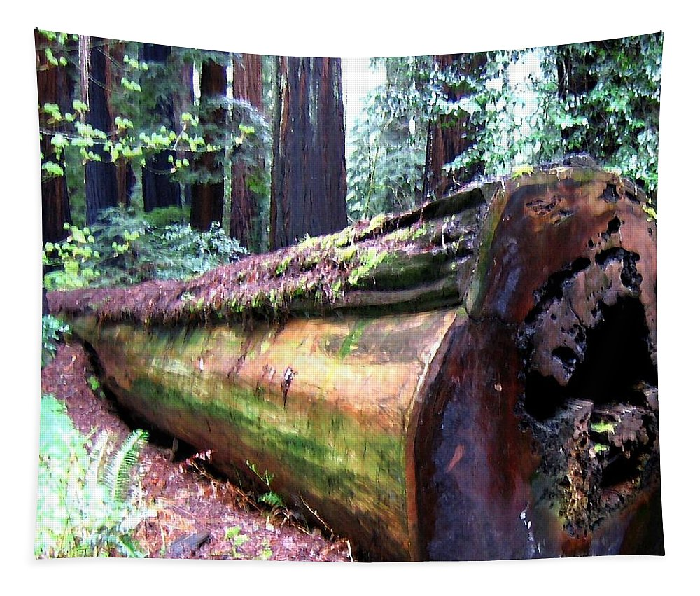 California Redwoods 2 Tapestry featuring the digital art California Redwoods 2 by Will Borden