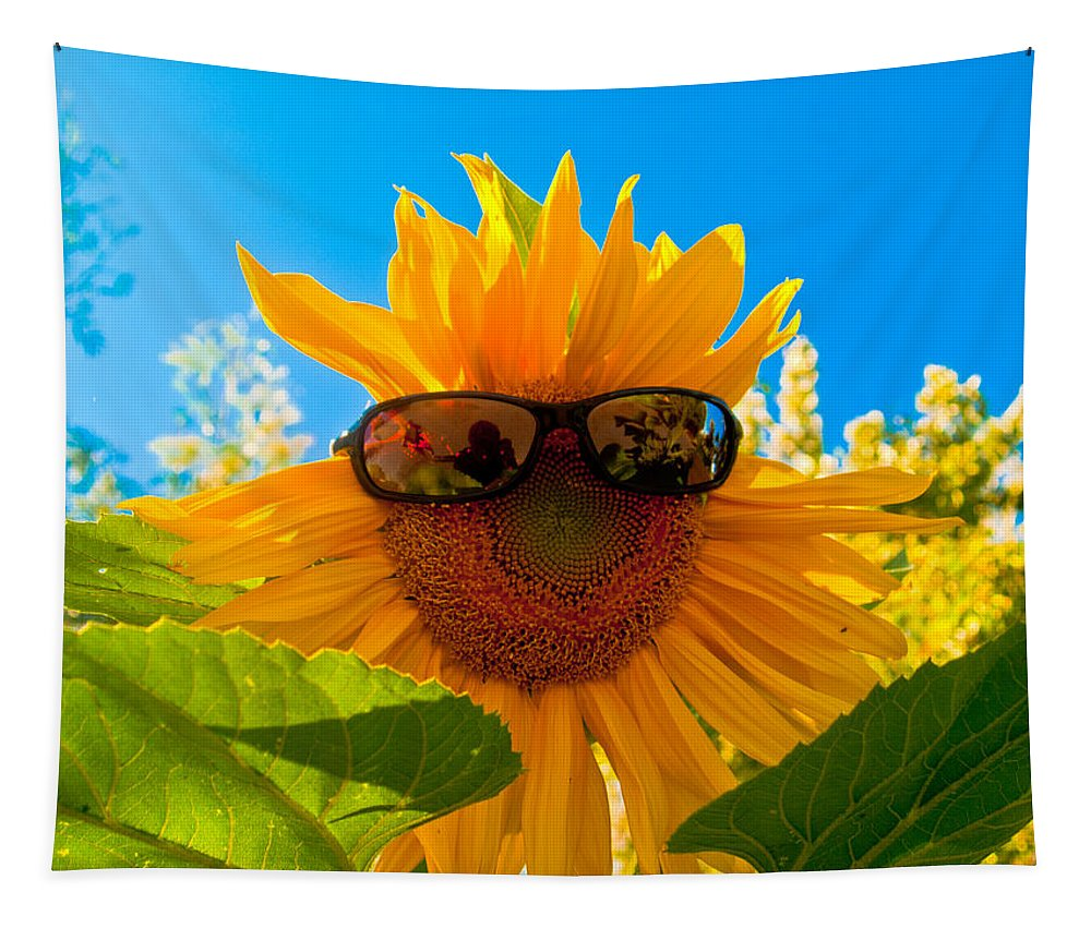 Bill Gallagher Tapestry featuring the photograph California Sunflower by Bill Gallagher
