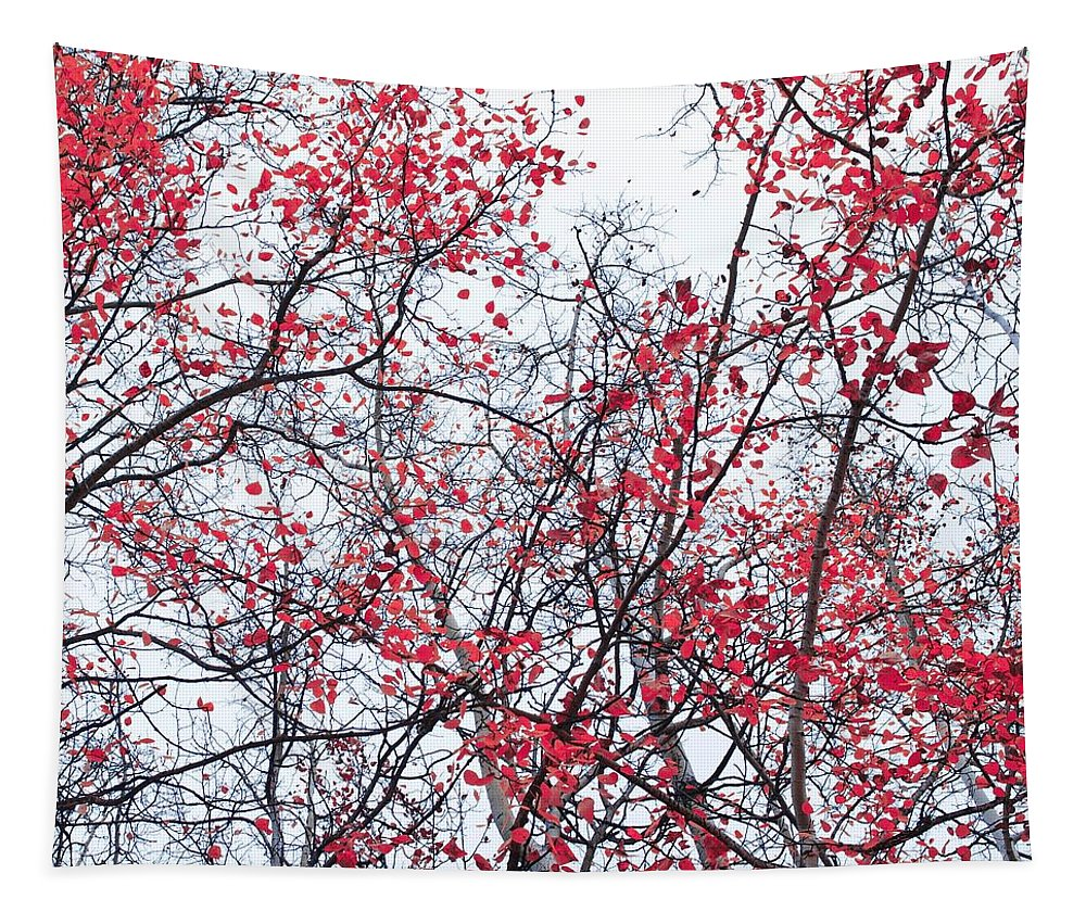 Red Tapestry featuring the photograph Canopy Trees by Priska Wettstein