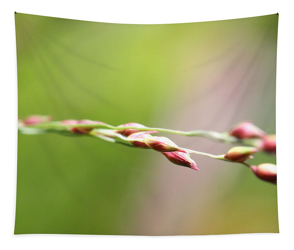 Horticulture Tapestry featuring the photograph Cantigny - 60 by Ely Arsha