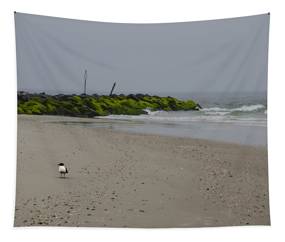 Cape Tapestry featuring the photograph Cape May Beach by Bill Cannon