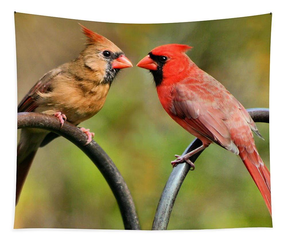 Cardinalis Tapestry featuring the photograph Cardinal Love by Kristin Elmquist