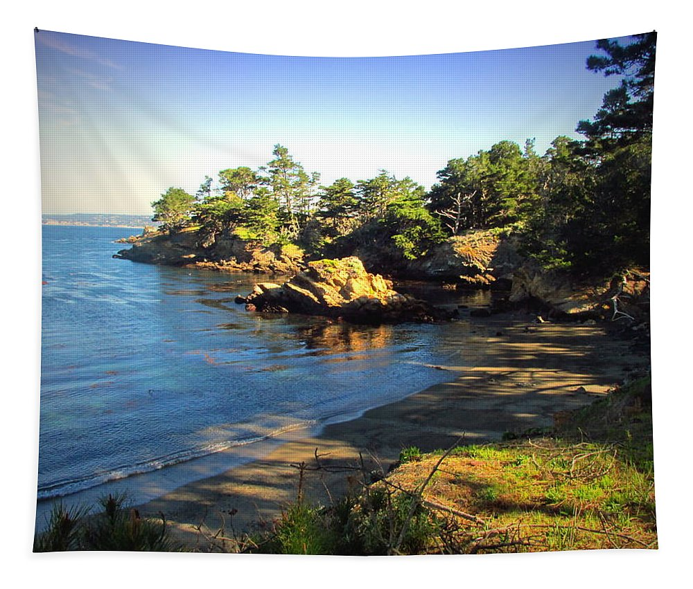 Point-lobos Tapestry featuring the photograph Carmel Meadows Beach At Point Lobos by Joyce Dickens