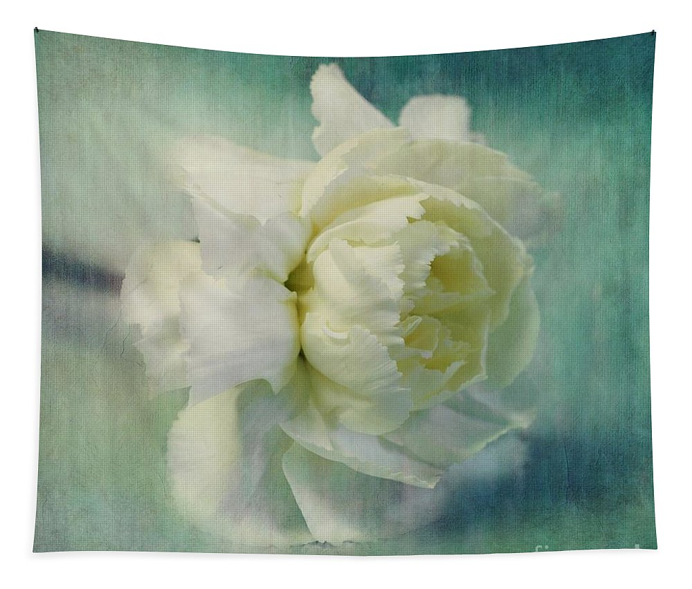 Carnation Tapestry featuring the photograph Carnation by Priska Wettstein