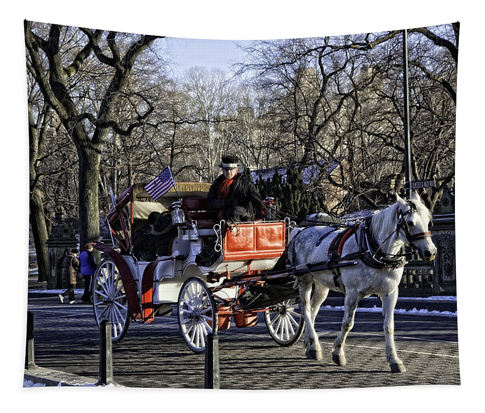 Carriage Tapestry featuring the photograph Carriage Driver - Central Park - Nyc by Madeline Ellis