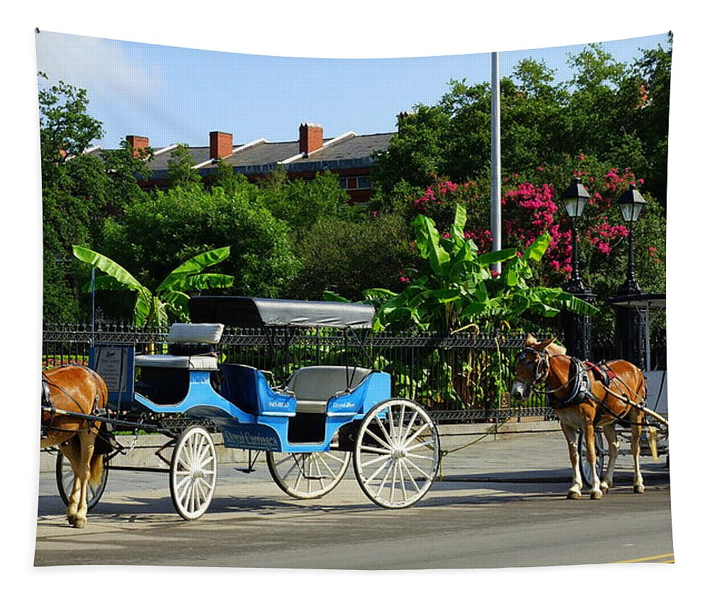 Horse Drawn Carriage Tapestry featuring the photograph Carriage Tours New Orleans by Paul Wilford