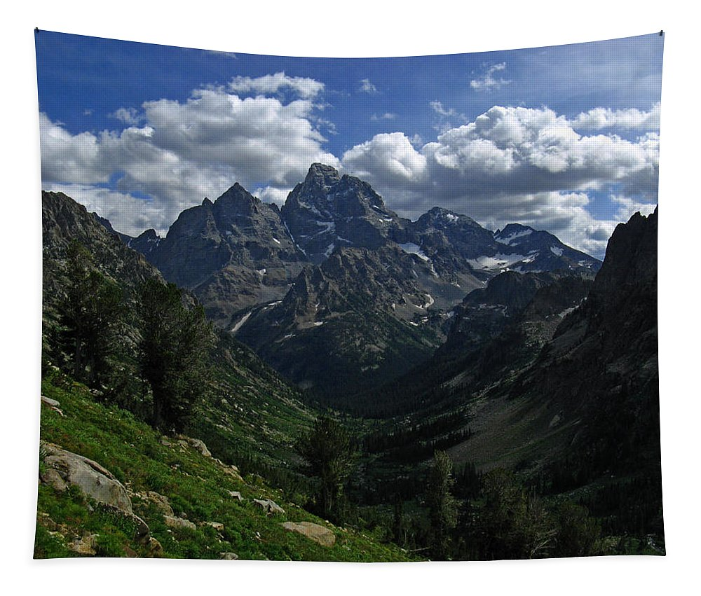 Grand Teton Tapestry featuring the photograph Cascade Canyon North Fork by Raymond Salani III