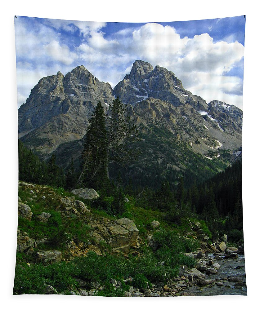 Cascade Canyon Tapestry featuring the photograph Cascade Creek The Grand Mount Owen by Raymond Salani III