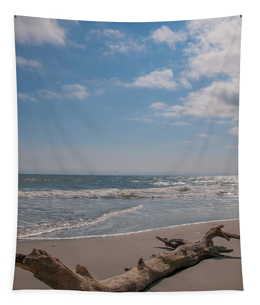Drift Tapestry featuring the photograph Cast Away by Dale Powell