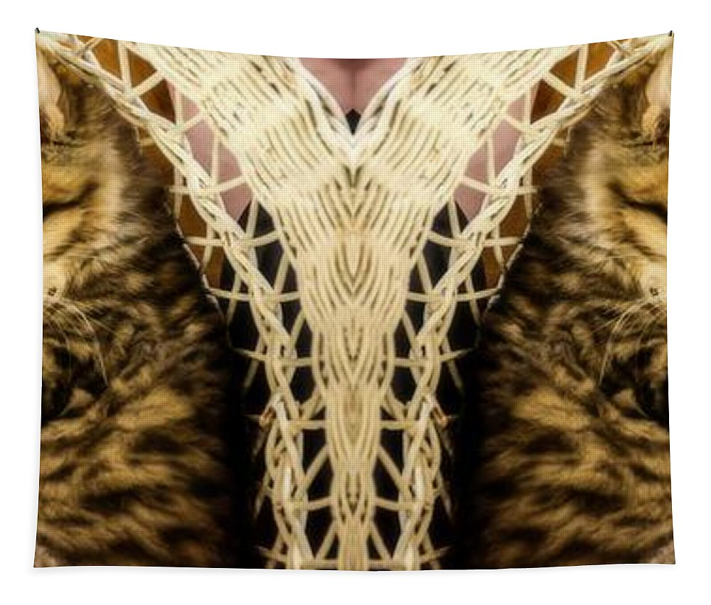 Cat Tapestry featuring the photograph Cat Nap With Elmo by Sherman Perry