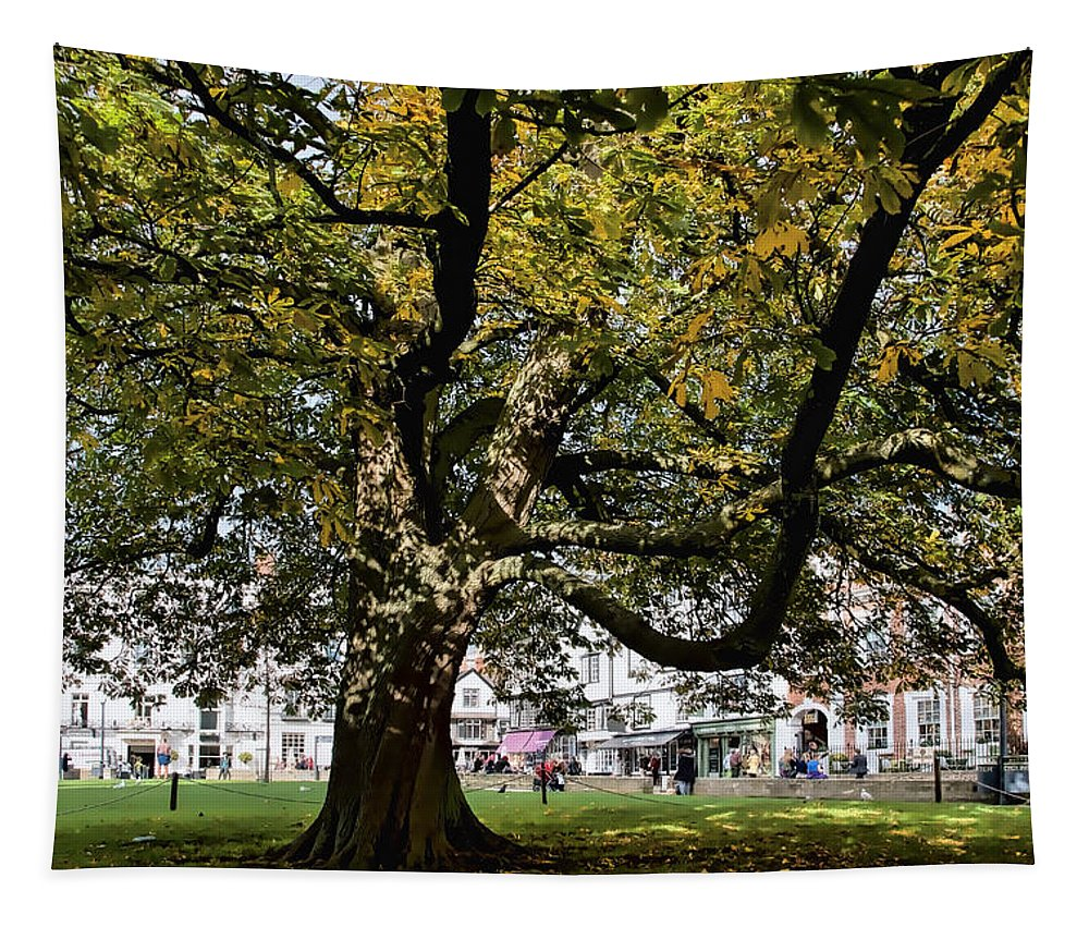 Exeter Tapestry featuring the photograph Cathedral Square - Exeter by Susie Peek