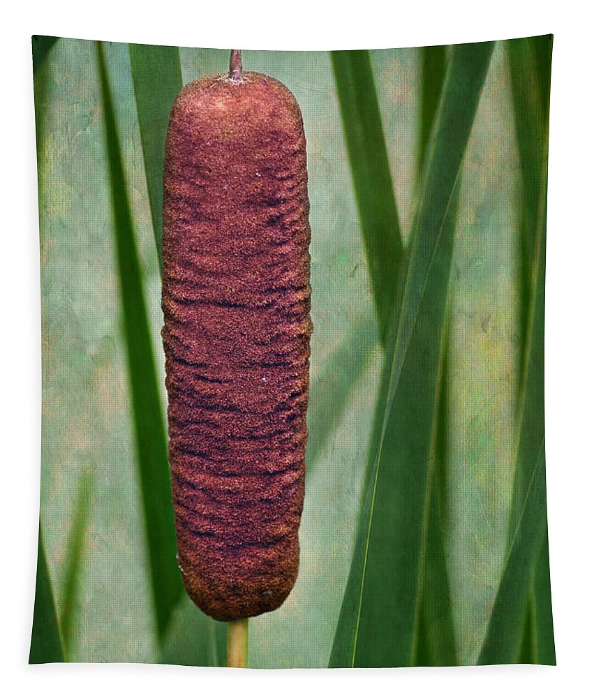 Brown Tapestry featuring the photograph Cattail With Texture by Nikolyn McDonald