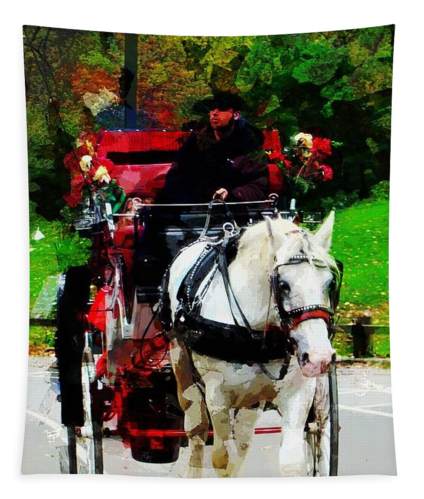 Central Park Horse Carriage New York Tapestry featuring the photograph Central Park Carriage by Alice Gipson