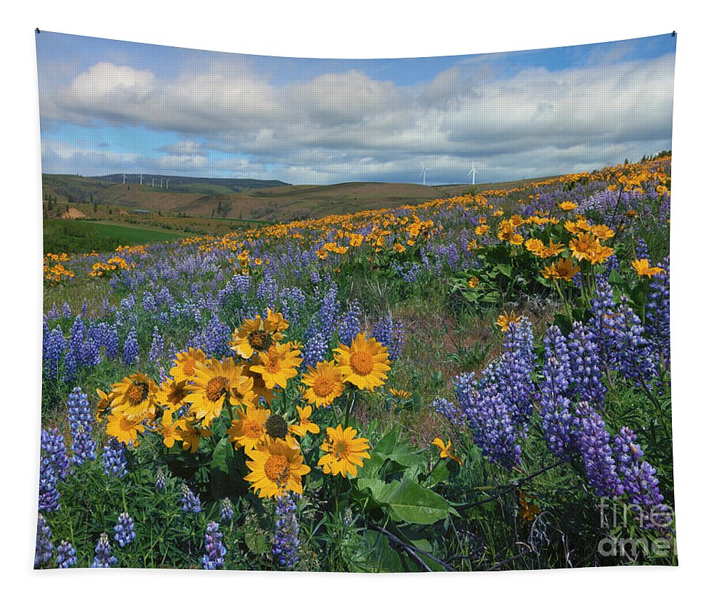Wildlflowers Tapestry featuring the photograph Central Washington Spring by Mike Dawson