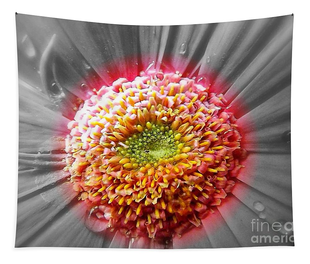 Gerbera Tapestry featuring the photograph Centre Of Beauty by Clare Bevan