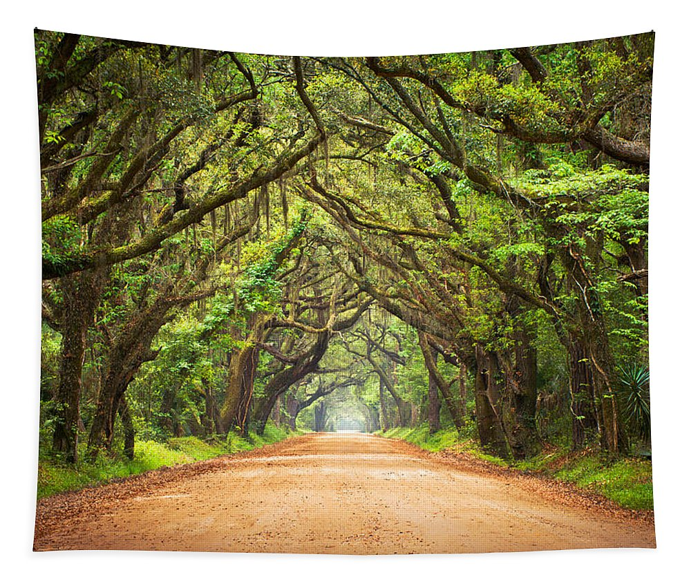 Swamp Tapestry featuring the photograph Charleston SC Edisto Island - Botany Bay Road by Dave Allen