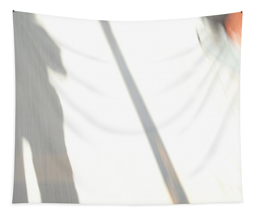 Shadows Tapestry featuring the photograph Chasing Shadows by Karol Livote