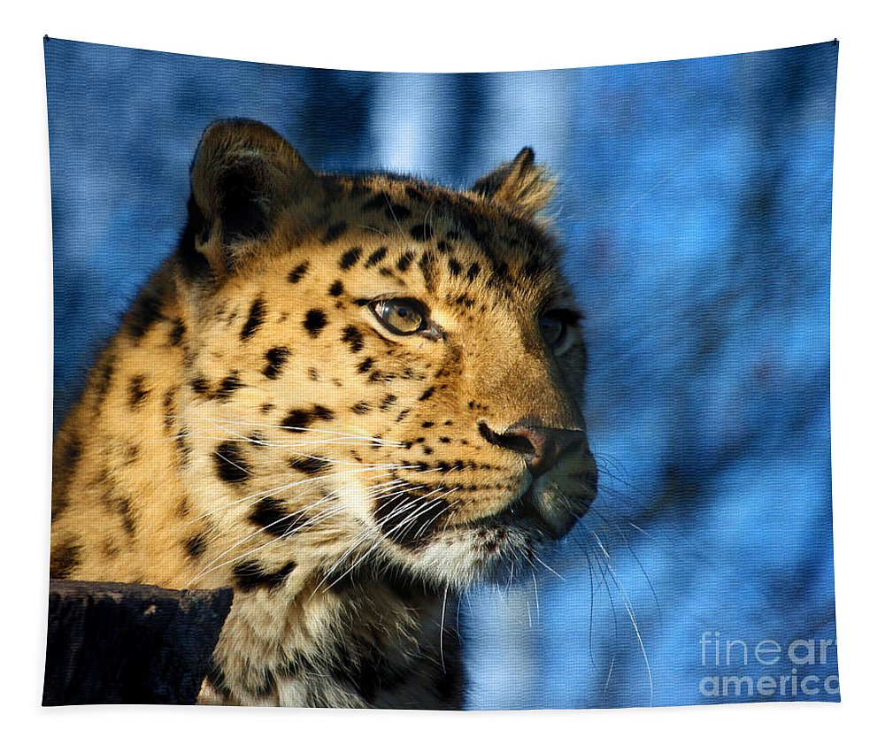 Wildlife Tapestry featuring the photograph Cheetah Acinonyx Jubatus by Terri Waters