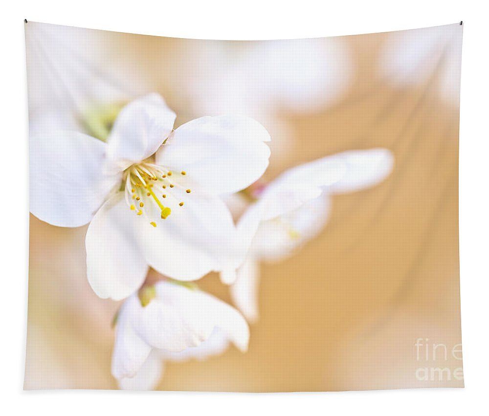 Cherry Tree Tapestry featuring the photograph Cherry Tree Flower by Delphimages Photo Creations