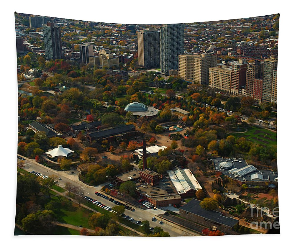 Cities Tapestry featuring the photograph Chicago Lincoln Park Zoo by Thomas Woolworth