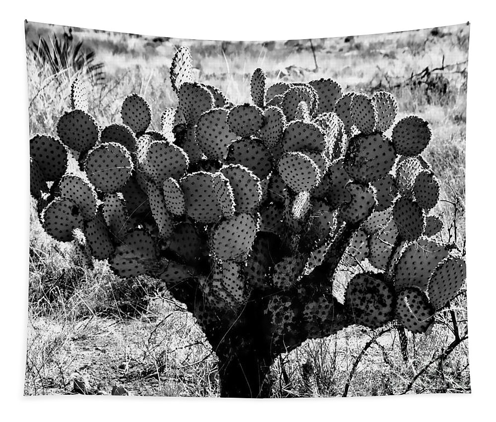 Digital Black And White Photo Tapestry featuring the digital art Chihuahua Desert Cactus Bw by Tim Richards