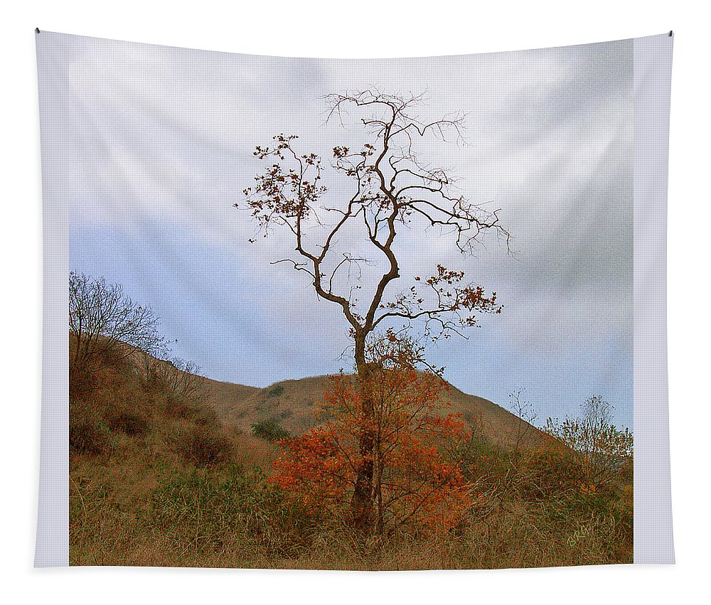 Tree Tapestry featuring the photograph Chino Hills Tree by Ben and Raisa Gertsberg