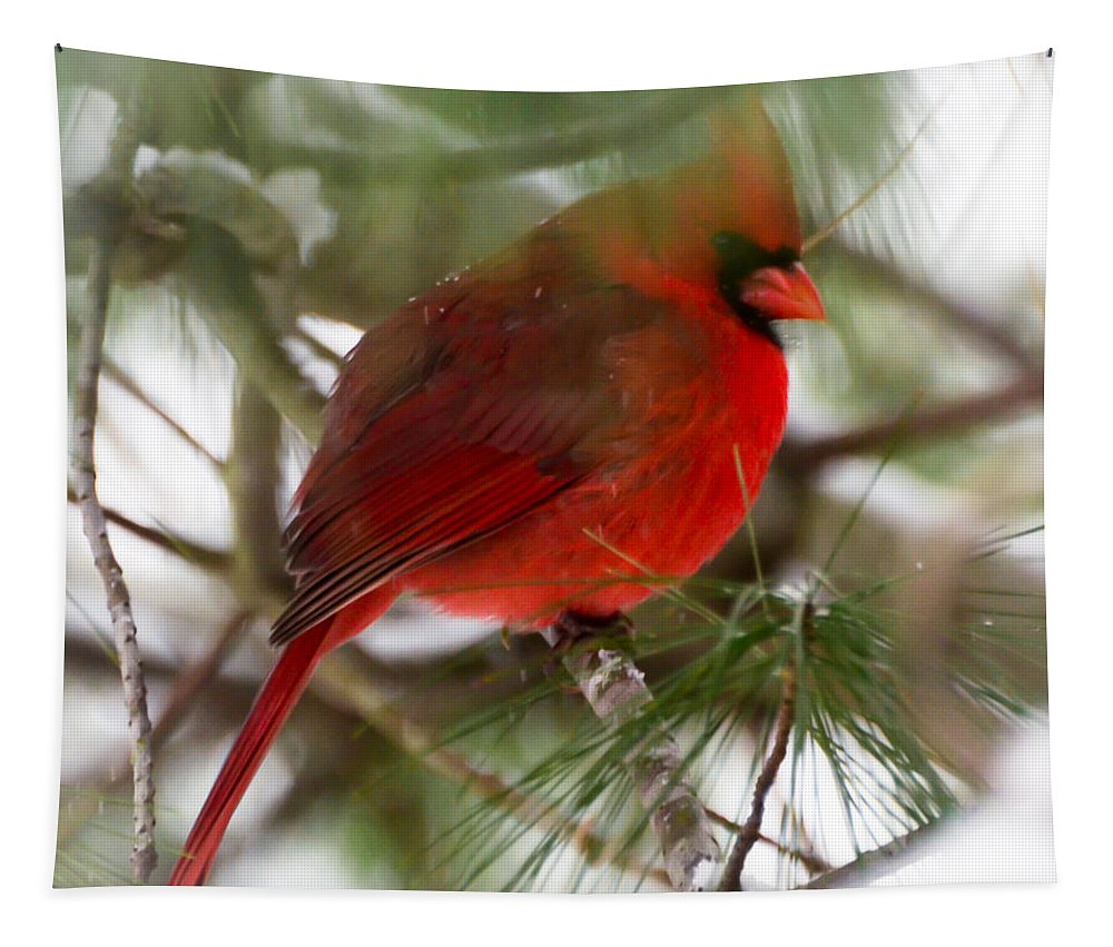 Christmas Cardinal Tapestry featuring the photograph Christmas Cardinal by Kerri Farley
