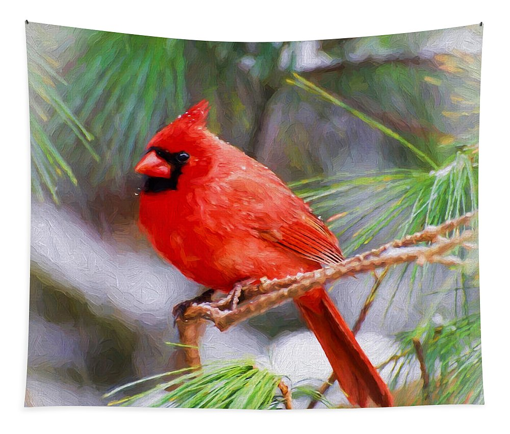 Male Cardinal Tapestry featuring the photograph Christmas Cardinal - Male by Kerri Farley