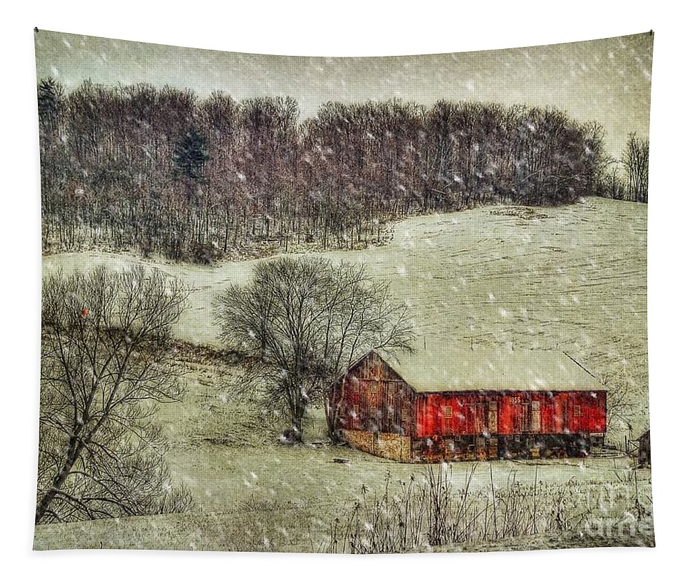 Red Barn Tapestry featuring the photograph Circa 1855 by Lois Bryan