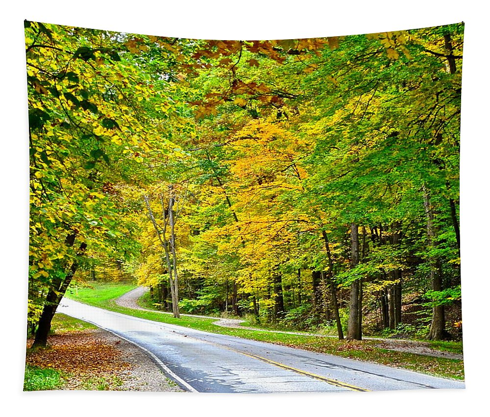 Metroparks Tapestry featuring the photograph Cleveland Metroparks by Frozen in Time Fine Art Photography