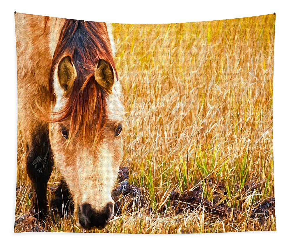 Chincoteague Ponies Tapestry featuring the photograph Close Up In The Marsh by Alice Gipson
