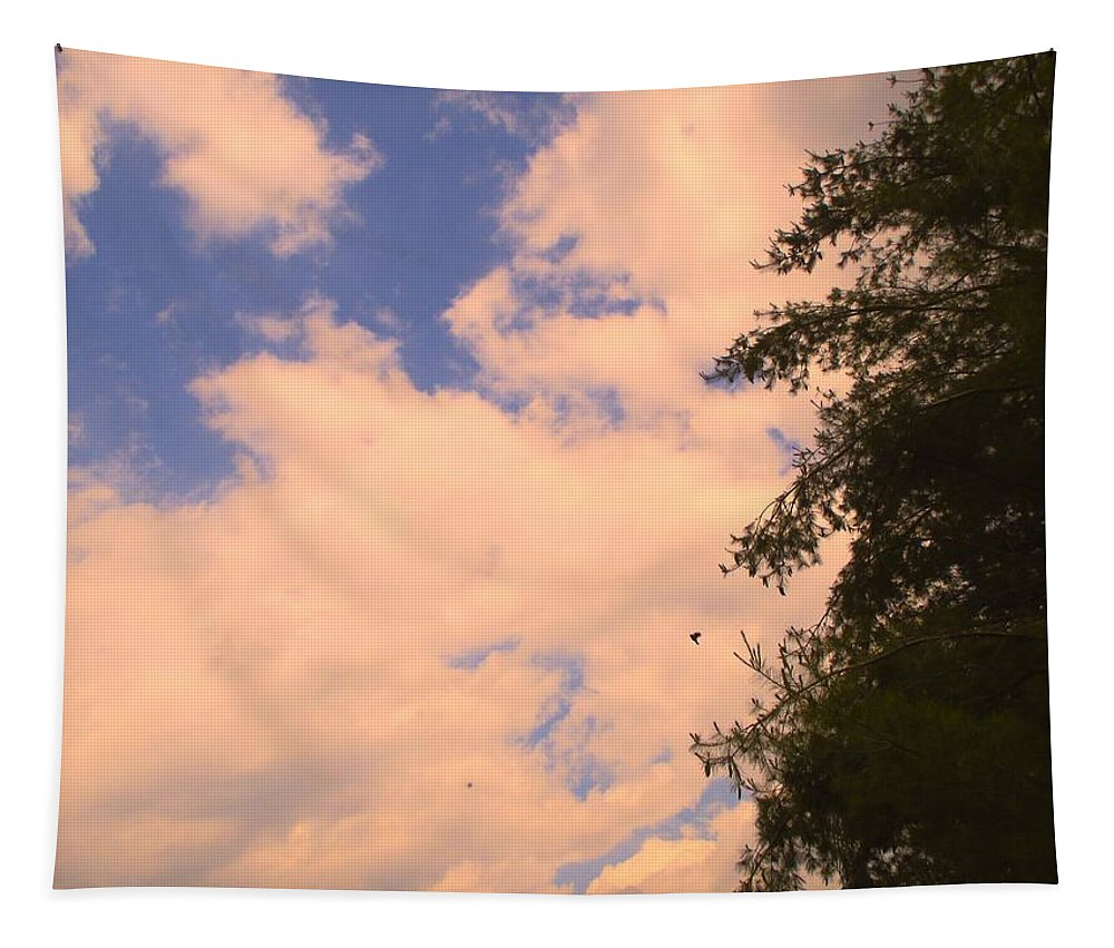 Clouds Tapestry featuring the photograph Cloud Slide by Kendall Kessler