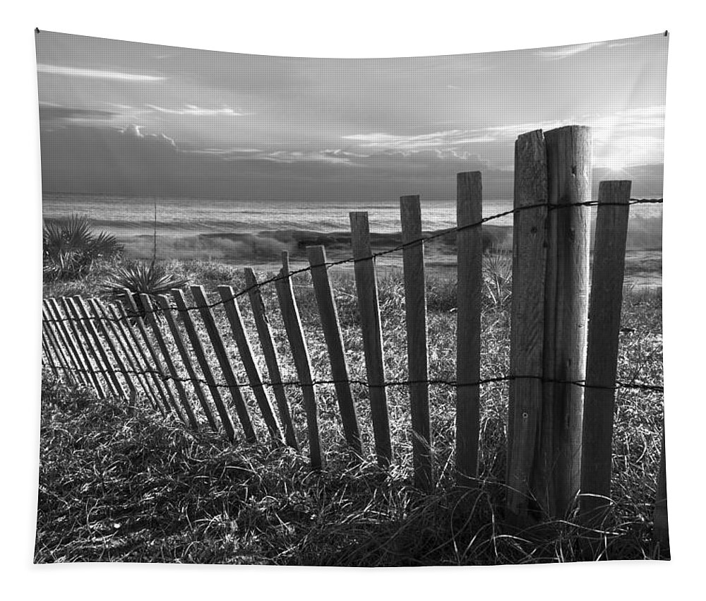 Atlantic Tapestry featuring the photograph Coastal Dunes In Black And White by Debra and Dave Vanderlaan